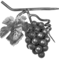 "Forged Steel Grape Cluster w.Leaf. 5-7/8"" H"