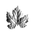 "Stamped Steel Bigtooth Maple Leaf.  3-3/4"" H"